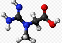 What Is The Best Creatine For Muscle Growth - creatine molecule