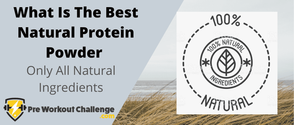 What Is The Best Natural Protein Powder
