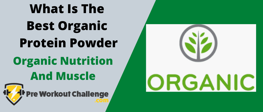 What Is The Best Organic Protein Powder