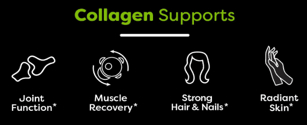 Orgain Collagen Peptides Review - Orgain collagen list of supports