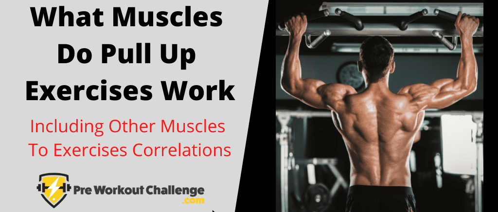 What Muscles Do Pull Up Exercises Work